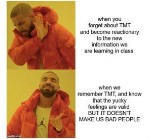Drake meme regarding defensive compensatory reactions