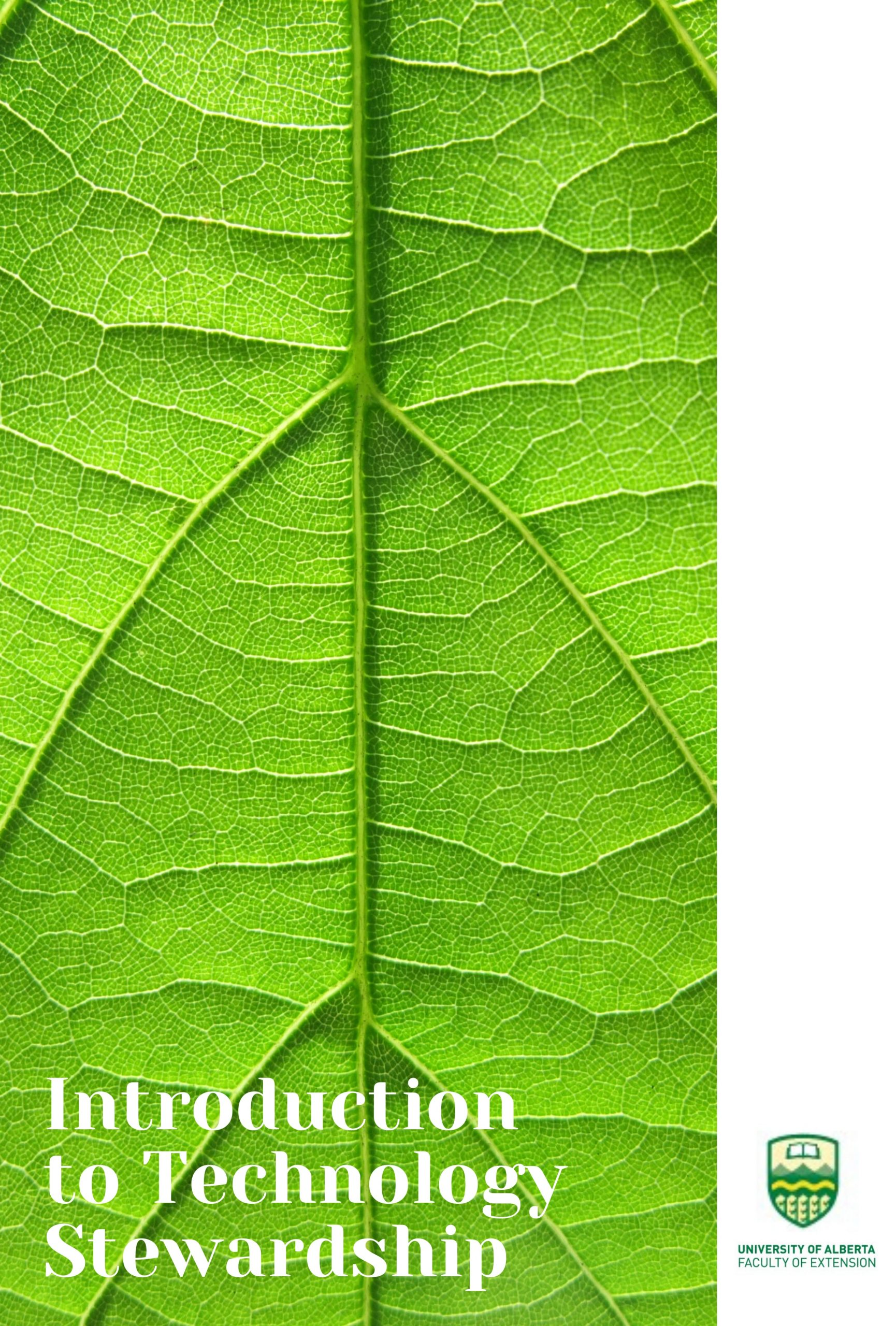 Cover image for Introduction to Technology Stewardship for Agricultural Extension and Advisory Services