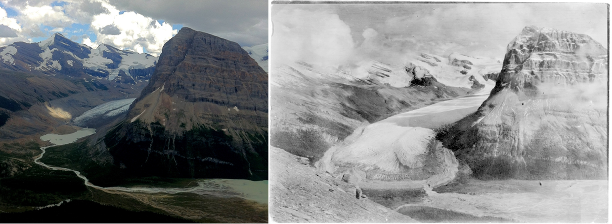 Figure I-1: Rearguard Mountain and Robson Glacier in the Rocky Mountains of British Columbia.