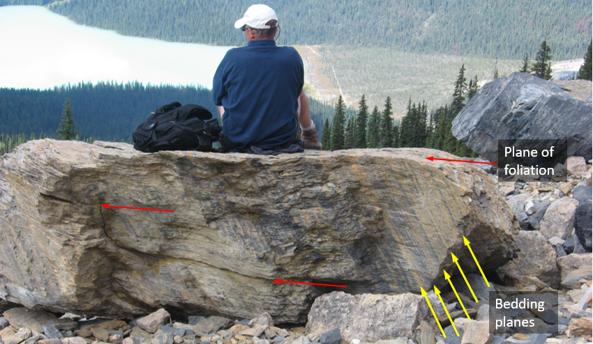 Figure 6.2.3: A slate boulder on the side of Mt. Wapta in the Rockies near Field, BC. Bedding is visible as light and dark bands sloping steeply to the right (yellow arrows). Slaty cleavage is evident from the way the rock has broken (along the flat surface that the person is sitting on) and also from lines of weakness that are parallel to that same trend (red arrows).
