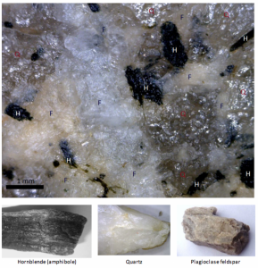 Figure I6: A close-up view of the rock granite and some of the minerals that it typically contains (H = hornblende (amphibole), Q = quartz and F = feldspar). The crystals range from about 0.1 to 3 millimetres (mm) in diameter. Most are irregular in outline, but some are rectangular.