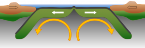 Figure 1.1.5: A representation of Harold Hess's model for seafloor spreading and subduction.