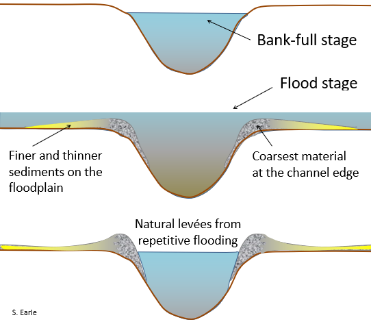 Figure 8.1.4: The development of natural levées during flooding of a stream. The sediments of the levée become increasingly fine away from the stream channel, and even finer sediments — clay, silt, and fine sand — are deposited across most of the flood plain.