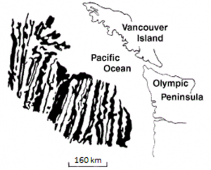 Figure 1.1.4: Pattern of seafloor magnetism off of the west coast of British Columbia and Washington.