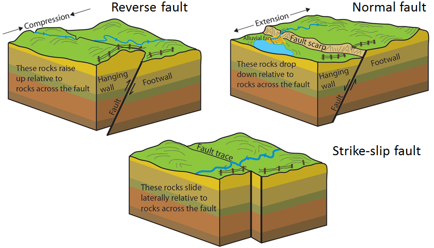 Figure 10.3.3: Depiction of reverse, normal, and strike-slip faults.Reverse faults happen during compression while normal faults happen during extension.Most strike-slip faults are related to transform boundaries.