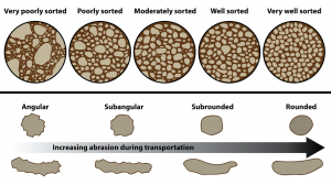 Figure 5.35: A visual reference for descriptions of sorting (top) and roundness (bottom) of sediments and grains in clastic sedimentary rocks. Note that rounded grains are not necessarily spherical in shape! Grain shapes are controlled by both the extent of transportation (and abrasion) and by the physical properties of the grain.