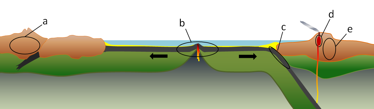 Figure 6.1.4: Environments of metamorphism in the context of plate tectonics: (a) regional metamorphism related to mountain building at a continent-continent convergent boundary, (b) regional metamorphism of oceanic crust in the area on either side of a spreading ridge, (c) regional metamorphism of oceanic crustal rocks within a subduction zone, (d) contact metamorphism adjacent to a magma body at a high level in the crust, and (e) regional metamorphism related to mountain building at a convergent boundary.