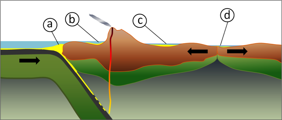 Figure 5.5.2: Some of the more important types of tectonically produced basins: (a) trench basin, (b) forearc basin, (c) foreland basin, and (d) rift basin.