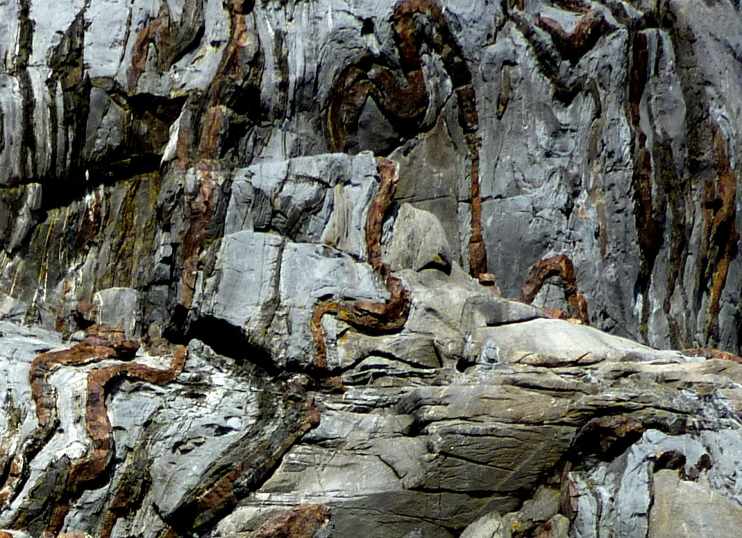 Figure 5.4.5: Chert (brown layers) interbedded with Triassic Quatsino Formation limestone on Quadra Island, B.C. All of the layers have been folded, and the chert, being insoluble and harder than limestone, stands out.