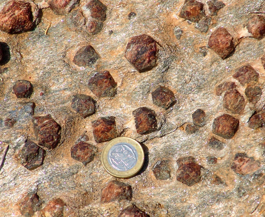 Figure 6.1.3: Garnets in a schist. Euro coin (23 mm) is for scale.