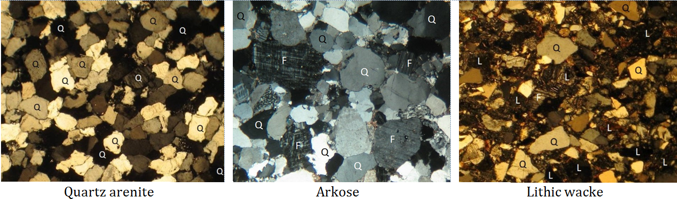 Figure 5.3.6: Microscope photos of three types of sandstone in thin-section. Some of the minerals are labelled: Q=quartz, F=feldspar and L= lithic (rock fragments). The quartz arenite and arkose have relatively little silt-clay matrix, while the lithic wacke has abundant matrix.