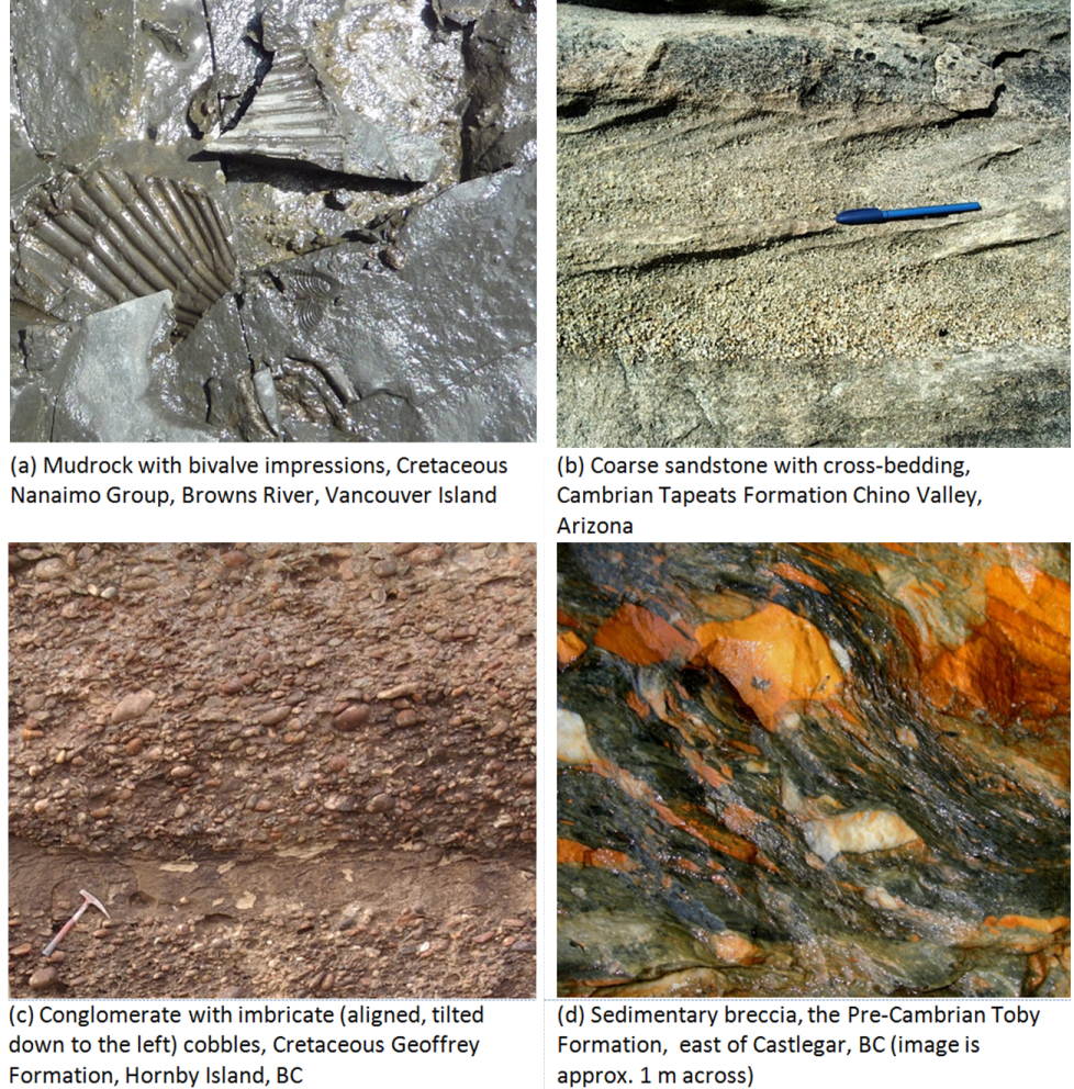 Figure 5.3.8: Examples of various clastic sedimentary rocks.